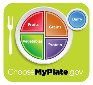 Examining the government's food plate