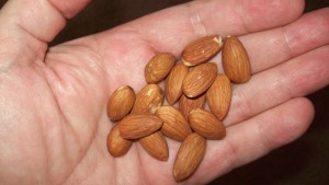 Going nuts on a low-carb diet
